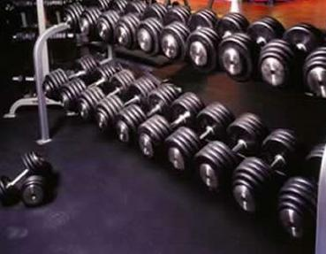 free-weights-for-weight-training-program-bodybuilding-review